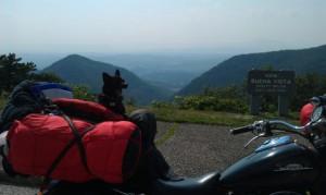 BikerDogSlider055